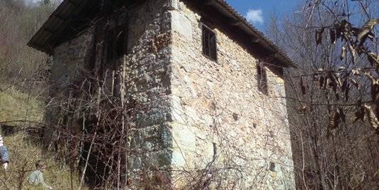 Zidanica ob Kolpi, Vrt