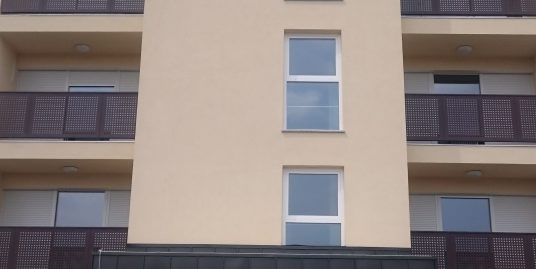 Trosobno stanovanje z atrijem ob Rinži, Kočevje S-2 (novogradnja)